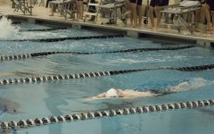 Boys swim team finishes strong